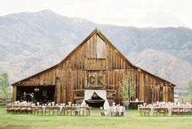 parties + weddings / by Emily Jennie Meissner