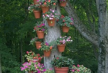 Indoor/outdoor gardening and decorating / by Lori Fritz
