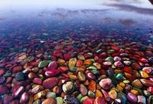 Nature's Marvels