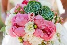 Beautiful Blooms / by jess
