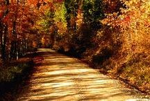 Paths To Somewhere / by Vickie Klingler