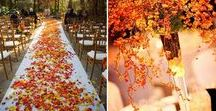 Fall Weddings / Happy Fall Y'all! Autumn brides should focus on the rich tapestry that Mother Nature provides during this season - rich reds, oranges, plums, and golds -to bring an elegant touch to their special day.