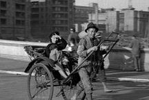 Shanghaied / by Suzie Visser Klander