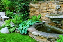 landscaping / by Holly Boland