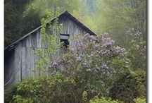 Barns / by Karen Ruble
