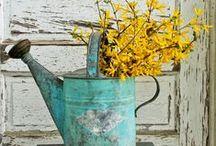 A cutting garden / by Karen Ruble