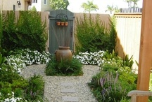 GREEN: Ideas For Our Tiny Yard