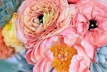 Flowers / by Tiffany Bowling
