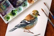 Painting - Watercolor / by Debbie Norris