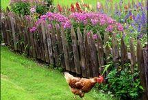 Garden Ideas. / Backyard wish lists and farm dreams.