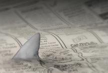 Sharks / by Jennifer Cravens
