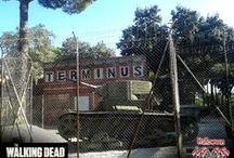 The Walking Dead Experience / The Walking Dead Experience es el nuevo pasaje del terror basado en la serie de AMC
