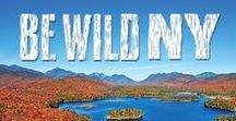 #BeWildNY / New York State has an extraordinary opportunity to create an expanded  Adirondack High Peaks Wilderness whose scale and positive clean water, wildlife and community economic impacts will rival the most famous conservation landmarks in the world. By protecting the Boreas Ponds with a wilderness classification and a buffer of wilderness protection from motorized recreation, we can help protect a one of a kind gem of the Northeast. #BeWildNY