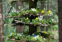 nature + art