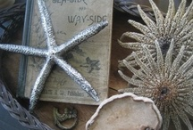 Seaside Decor / Inspiring seaside decorating pictures