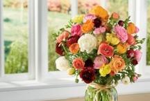 Floral Inspiration / by Cristina Vazquez-Villegas