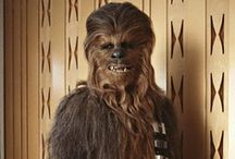 Chewbacca, What a Wookiee! / by Heather Merrill
