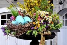 Spring is Here! / The Flowers and Projects for Spring!  Inspiration