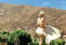 365 Things to do in the Palm Springs Area!