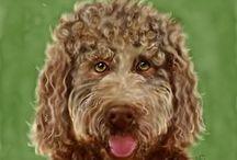 Pet Portraits by Kschowe
