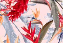 Prints & Patterns / Cool repeating prints and patterns. Seasonal vibes, naturally.