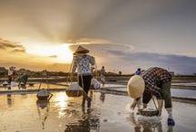 Vietnamese Landscapes & Colors