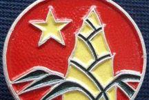 Vietnamese communist pins