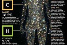 Yoga & Anatomy / Yoga sequences, anatomy, and cosmic vibes