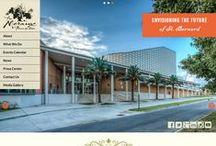 Websites / Custom websites designed and developed by Deep Fried Advertising + Web Design in New Orleans, LA.