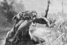 Cryptids / Supernatural History Illustration? I find the pictures produced by third party illustrators fascinating. You can never be sure just how closely they worked to the original description given by the eyewitnesses.