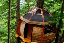 camping and cabins / by Julie Tague