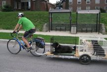 Bicycle trailers / For all of your cargo