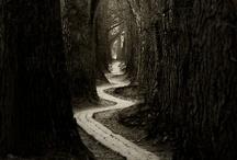 Walk through the World / by Hannah Gustafson