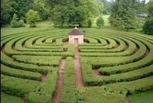 Mazes and Labyrinths / by Hannah Gustafson