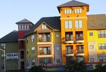 Apartments in Austin, TX / Great resource for apartments in Austin, TX
