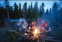 Camping in the Great Outdoors / Great tips for living the outdoor life in Texas.  Presented by http://www.ApartmentsRentRebate.com
