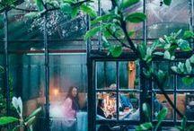 Greenhouses & Gardening