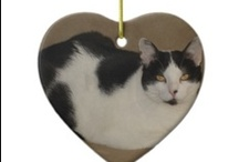 Cats and Kittens / Cats and Kittens and Pets We Love!
