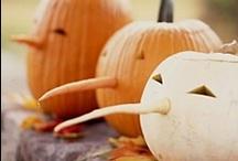 Halloween / by Dana