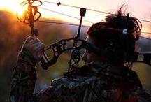 Archery / I wanna learn, soooo bad! / by Catherine Marshall