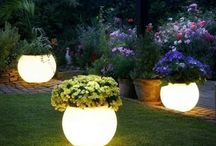 Outdoor / Green, beautiful outdoor spaces.  / by Kelly Kerr