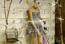 W I N D O W . / Visual Merchandising ideas and inspiration. / by Lauren McDowall