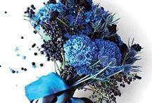 """couleurs : dream in blue... / j'ai cru un (court !) moment que huit ans d'école privée (et autant d'uniforme en bleu marine / blanc / bleu ciel !) m'avaient """"vaccinée"""" contre le(s) bleu(s)... mais non : je les aime !... du bleu le plus pâle au bleu marine, je les aime tous !... vêtements, accessoires, déco, linge de maison... je me rends compte que pas un domaine ne leur échappe et on les trouve un peu partout chez moi : oui, j'aime les bleus, un peu, beaucoup... et même passionnément !... / by Isabelle de Beukelaer"""