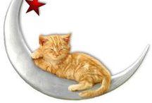 """chats gratuits / j'adore les chats - je crois que plus personne l'ignore !... et j'aime beaucoup les freebies : en réunissant les deux, voilà plein d'images, d'activités et autres créations sur mon thème favori, donc des chats gratuits !... en plus, avec ceux-là, pas de litière à changer, ni de pâtée à prévoir : vous pouvez donc """"adopter"""" tous ceux que vous voulez !... / by Isabelle de Beukelaer"""