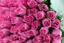 """couleurs : la vie en rose... / ça fait peut-être trop """"fifille""""... et j'ai (depuis longtemps !) passé l'âge des petites princesses qui ne veulent voir la vie qu'en rose, mais... malgré tout, j'aime le rose... ce n'est pas la couleur que je citerais immédiatement si on me demandait ma couleur préférée, et, pourtant, j'aime toutes ces images !... """"Think Pink"""" (dans tous les sens du terme), et """"Believe in Pink""""... oui : tout est """"Pretty in Pink""""... et c'est très bien comme ça !... / by Isabelle de Beukelaer"""