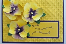 Stampin Up / by Meralee Smith