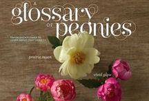 Gardening / Gardening | Flowers | Creative DIYs with Plants