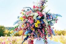 flowers / flowers just make life better