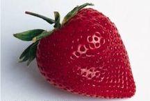 Fruit, Veg and Herbs Gardening / Home grown Fruit, Veg and Herbs are just the best! For more garden ideas and tips visit....http://www.amazon.com/-/e/B00AVQ6KKM  / by InfoEbooksOnline Publishing and Home Business