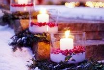 Winter and Christmas / by Karen Hamilton